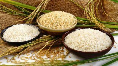 راه های تشخیص برنج ایرانی از برنج تقلبی