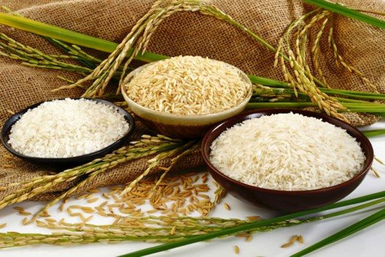 راه های تشخیص برنج اصلی از برنج تقلبی
