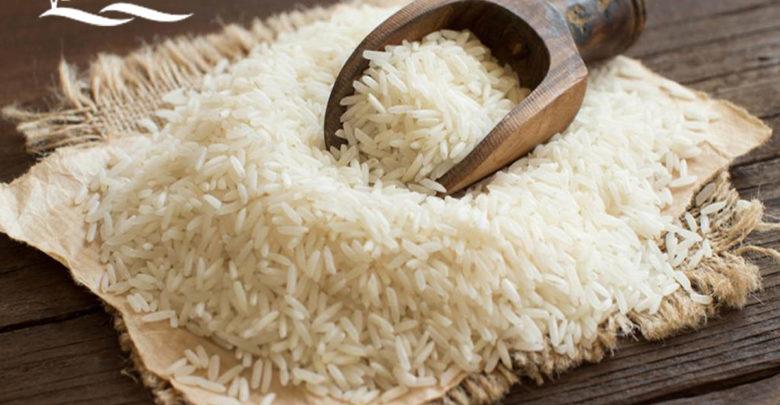 برنج-شیرودی. فروشگاه کشت لند