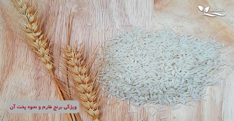 برنج طارم را بیشتر بشناسیم