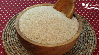 انتخاب برنج خوب و ارزان قیمت ملاک مهمی برای خرید برنج است.