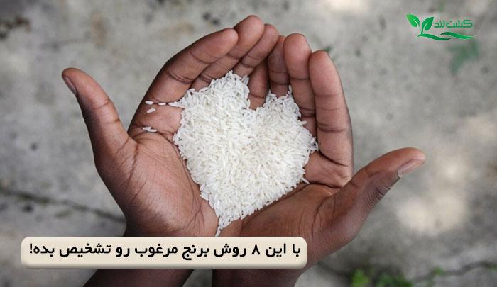 با این 8 روش برنج مرغوب رو تشخیص بده!
