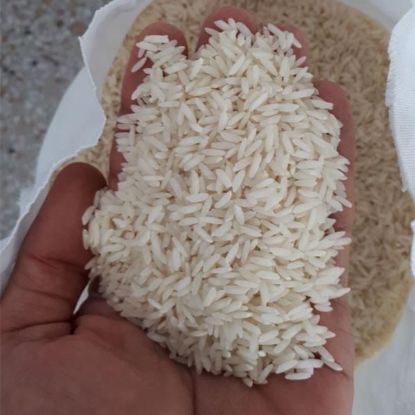 برنج امرالهی (بینام) کشت دوم فریدونکنار - برنج بهزاد - 5 کیلو