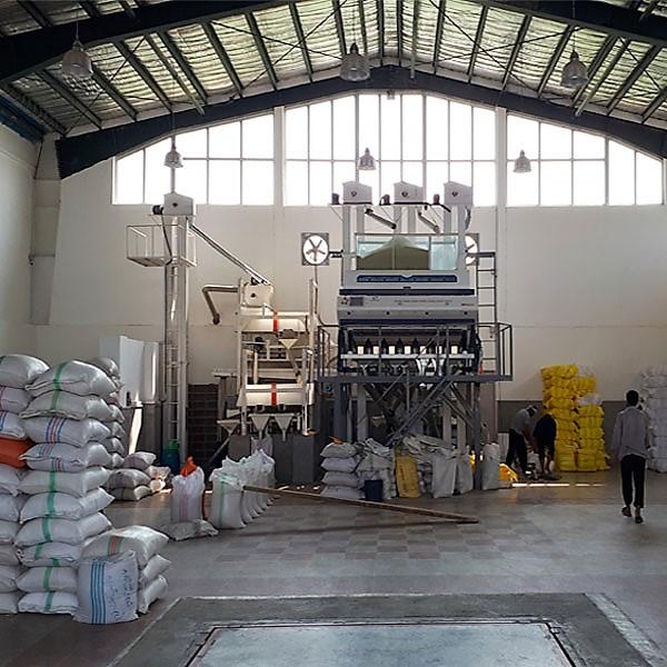 برنج دودی هاشمی فریدونکنار - برنج بهزاد - 5 کیلو